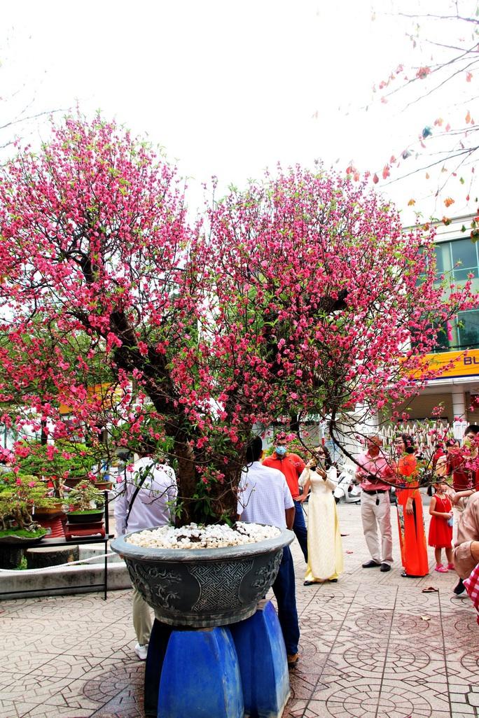 Bài dự thi Làm báo cùng Báo Người Lao Động: Tết hoa - Ảnh 1.