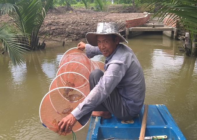Ngày Tết, cua biển ngon nhất miền Tây giá 1 triệu đồng/kg - Ảnh 1.