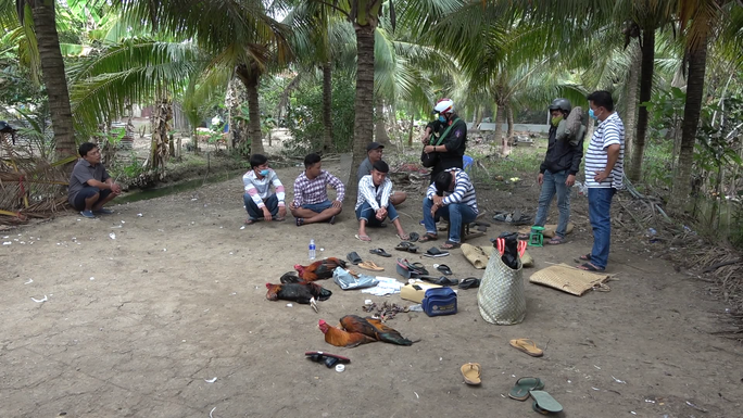 CLIP: Lại phá trường gà ở Tiền Giang, nhiều đối tượng tháo chạy - Ảnh 3.