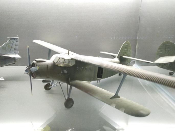 Chiêm ngưỡng bộ sưu tập máy bay mô hình gần 100 chiến đấu cơ của vị thượng tá  - Ảnh 8.