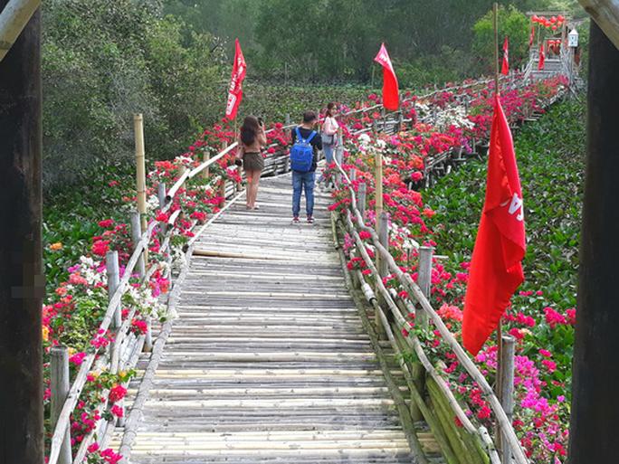 Thỏa sức check in chiếc cầu tre dài nhất Việt Nam giữa rừng tràm - Ảnh 7.