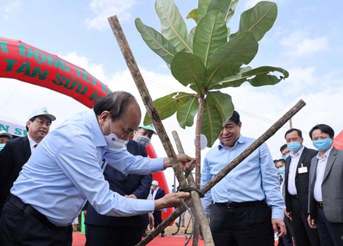 Sẽ nâng cấp sân bay Tuy Hòa lên 5 triệu khách/năm - Ảnh 1.