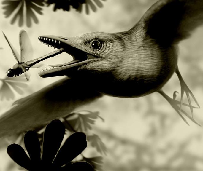 Kinh ngạc sinh vật bụng đầy đá quý, sống cạnh khủng long - Ảnh 1.