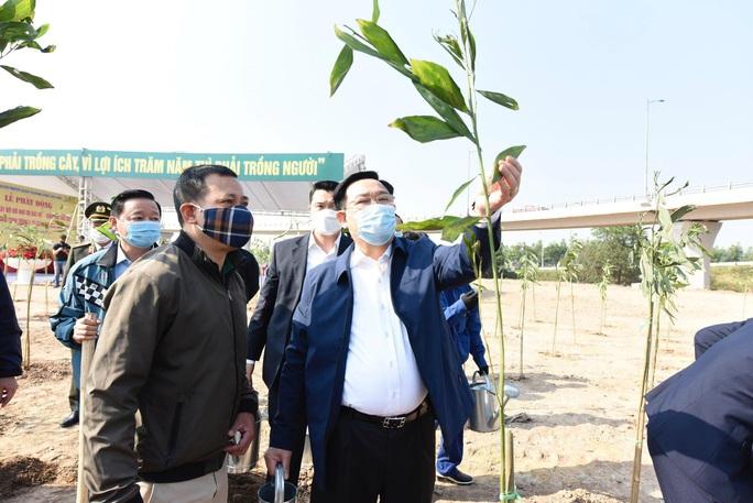 Hà Nội hướng đến mục tiêu trồng 1 tỉ cây xanh - Ảnh 2.