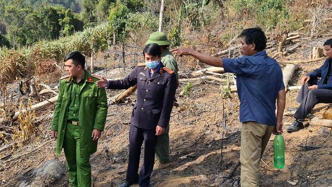 Lâm Đồng tái xuất tình trạng phá rừng phòng hộ, lấn chiếm đất - Ảnh 3.