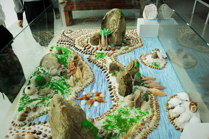 Độc lạ bộ sưu tập vỏ ốc ở Đà Nẵng - Ảnh 4.