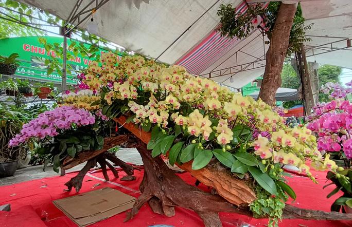 Những chậu hoa lan bằng gỗ lạ mắt ở chợ Tết - Ảnh 2.