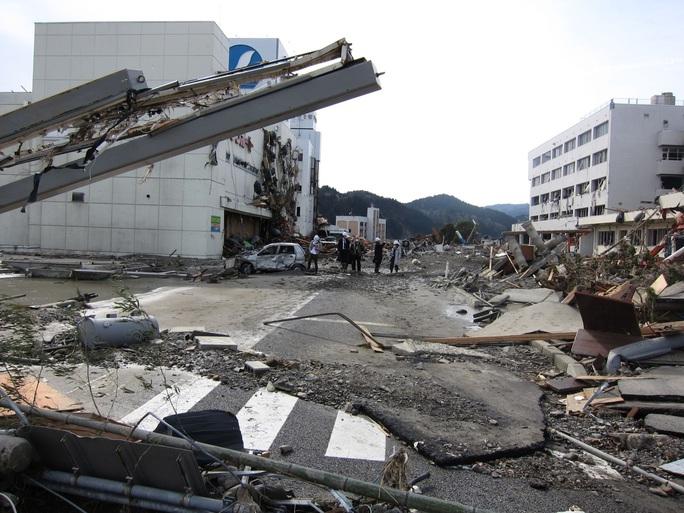 Thảm hoạ Nhật Bản: Cây thông thần kỳ 10 năm trước bây giờ ra sao? - Ảnh 1.