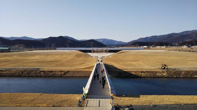Thảm hoạ Nhật Bản: Cây thông thần kỳ 10 năm trước bây giờ ra sao? - Ảnh 6.