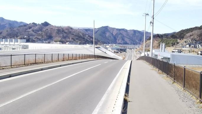 Thảm hoạ Nhật Bản: Cây thông thần kỳ 10 năm trước bây giờ ra sao? - Ảnh 7.