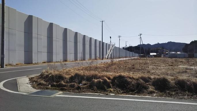 Thảm hoạ Nhật Bản: Cây thông thần kỳ 10 năm trước bây giờ ra sao? - Ảnh 9.