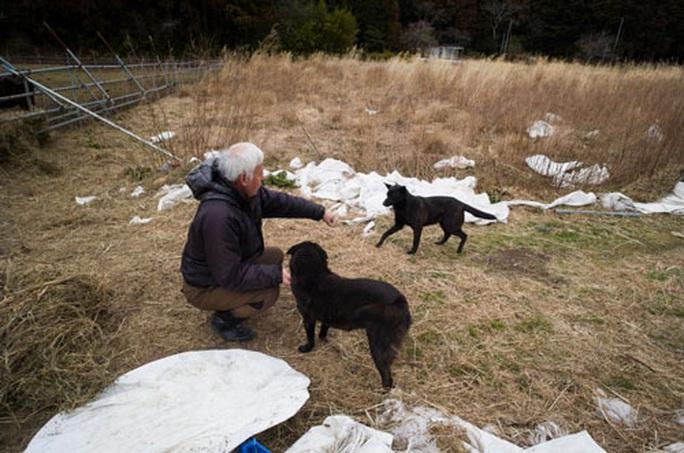 Nhật Bản sau thảm họa động đất, sóng thần: 10 năm chưa đủ nguôi ngoai - Ảnh 4.