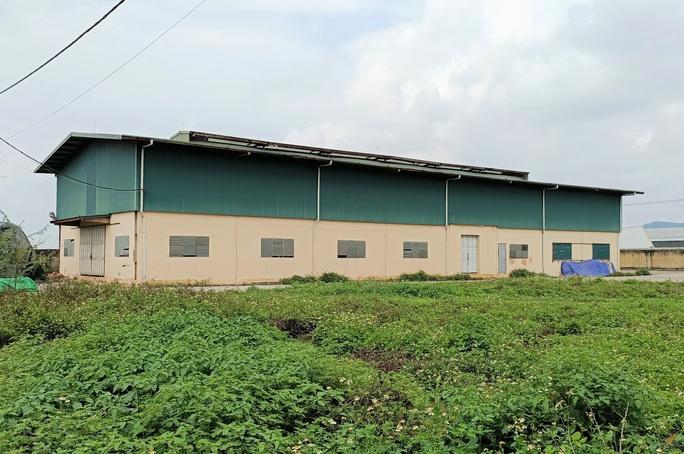 Trung tâm nông nghiệp 17 tỉ đồng ở Thanh Hóa xây xong để làm... cảnh - Ảnh 5.