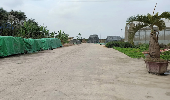 Trung tâm nông nghiệp 17 tỉ đồng ở Thanh Hóa xây xong để làm... cảnh - Ảnh 10.
