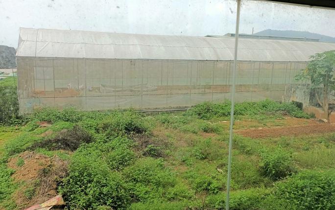 Trung tâm nông nghiệp 17 tỉ đồng ở Thanh Hóa xây xong để làm... cảnh - Ảnh 12.