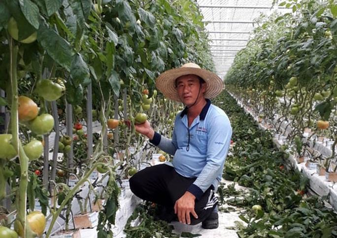 Thông tin quan trọng dành cho lao động Việt Nam tại Hàn Quốc - Ảnh 1.