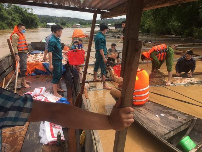 Gần 800 tấn cá bè chết trên sông Đồng Nai sau mưa lớn - Ảnh 3.