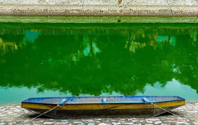 CLIP: Sông Tô Lịch bất ngờ xanh, nhiều người dân vui mừng bắt hàng tạ cá - Ảnh 4.