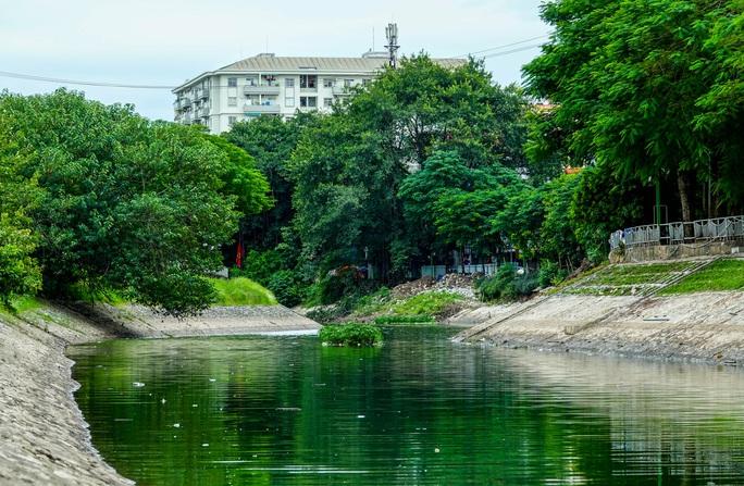 CLIP: Sông Tô Lịch bất ngờ xanh, nhiều người dân vui mừng bắt hàng tạ cá - Ảnh 3.