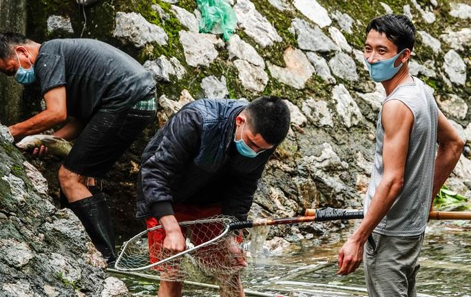 CLIP: Sông Tô Lịch bất ngờ xanh, nhiều người dân vui mừng bắt hàng tạ cá - Ảnh 7.