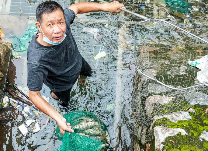 CLIP: Sông Tô Lịch bất ngờ xanh, nhiều người dân vui mừng bắt hàng tạ cá - Ảnh 9.