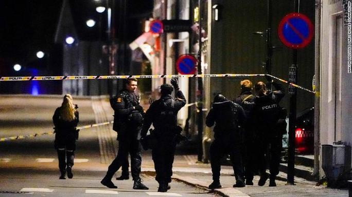 Na Uy: Rúng động vì 5 người bị bắn chết bằng cung tên - Ảnh 3.