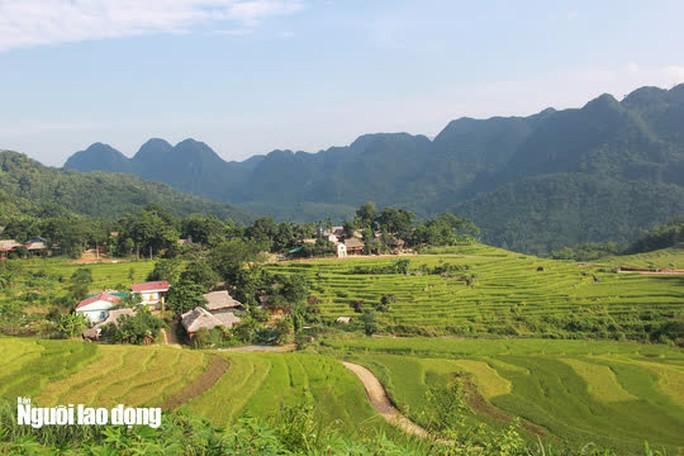 Vẻ đẹp mê mẩn mùa vàng ở Pù Luông - Sa Pa của xứ Thanh - Ảnh 1.