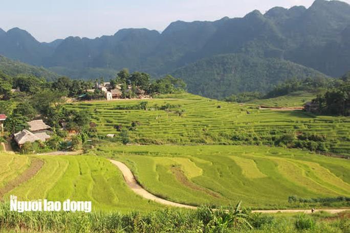 Vẻ đẹp mê mẩn mùa vàng ở Pù Luông - Sa Pa của xứ Thanh - Ảnh 2.