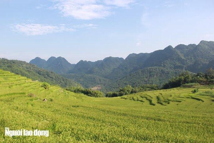 Vẻ đẹp mê mẩn mùa vàng ở Pù Luông - Sa Pa của xứ Thanh - Ảnh 5.