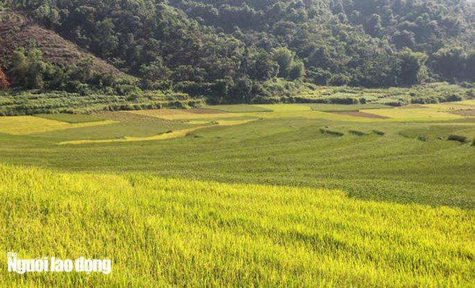 Vẻ đẹp mê mẩn mùa vàng ở Pù Luông - Sa Pa của xứ Thanh - Ảnh 7.