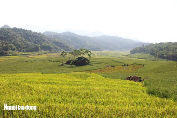 Vẻ đẹp mê mẩn mùa vàng ở Pù Luông - Sa Pa của xứ Thanh - Ảnh 9.