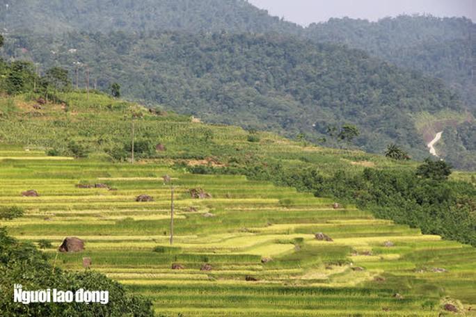Vẻ đẹp mê mẩn mùa vàng ở Pù Luông - Sa Pa của xứ Thanh - Ảnh 10.