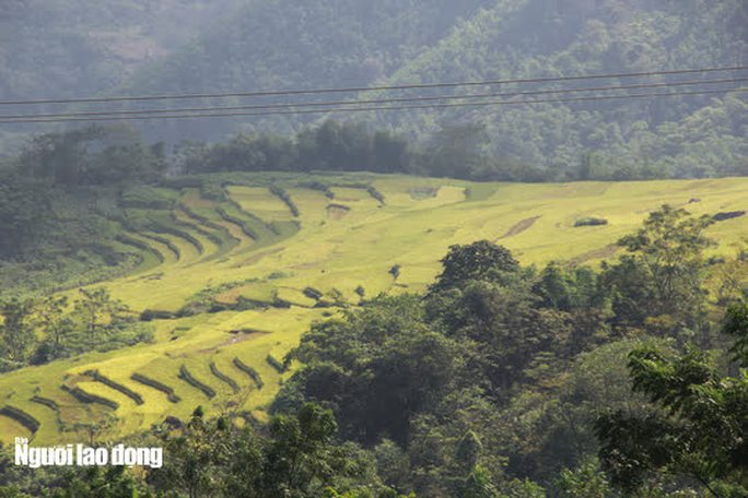 Vẻ đẹp mê mẩn mùa vàng ở Pù Luông - Sa Pa của xứ Thanh - Ảnh 11.