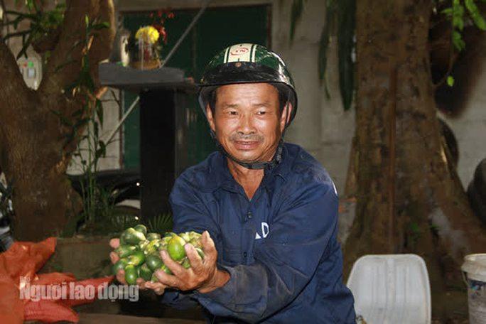Ông Bùi Văn Hòa (SN 1969, thôn Bót, xã Minh Sơn, huyện Ngọc Lặc) cho biết ông có tới 20 năm làm nghề trèo cau mưu sinh