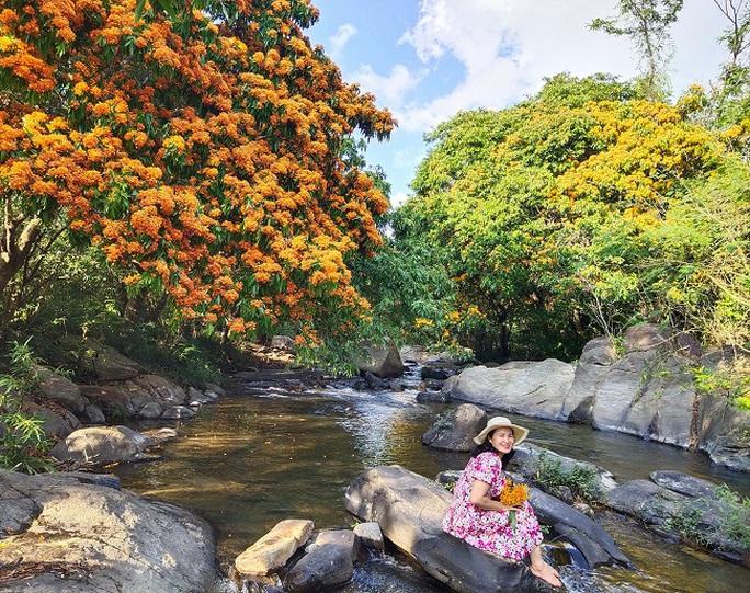 Hoa trang rừng phủ kín suối Tà Má - Ảnh 2.