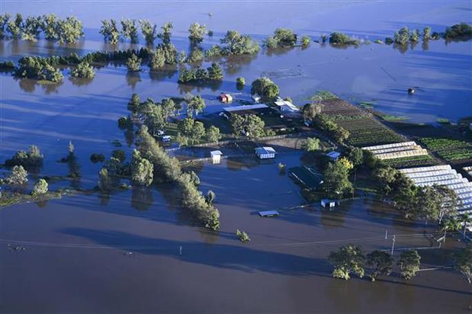 Úc: Chết kẹt trong xe hơi ngay ngày đầu nhận việc do lũ lụt kinh hoàng - Ảnh 3.