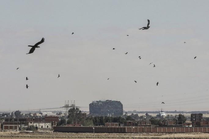 Chùm ảnh hàng trăm tàu lũ lượt qua kênh đào Suez - Ảnh 6.