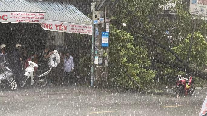 Video: Cảnh thót tim cây xanh ngã trong cơn mưa chiều ở TP HCM - Ảnh 4.