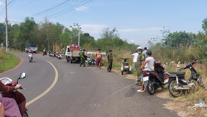 Tai nạn giao thông thương tâm ở Đồng Nai - Ảnh 2.