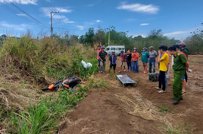 Tai nạn giao thông thương tâm ở Đồng Nai - Ảnh 1.