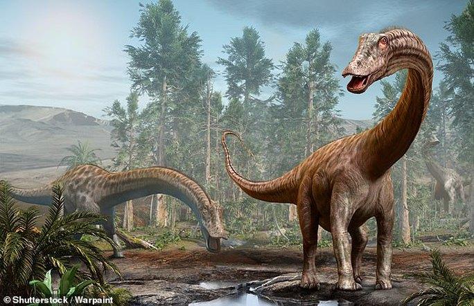 Kho báu rùng mình: Dàn siêu quái thú bụng đầy đá quý, 155 triệu tuổi - Ảnh 3.