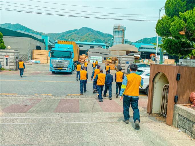 Lao động Việt Nam ở Hàn Quốc mong được về quê hương - Ảnh 3.