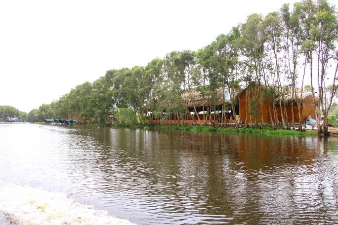 Sếu đầu đỏ trở về Vườn Quốc gia Tràm Chim sau thời gian vắng bóng - Ảnh 12.