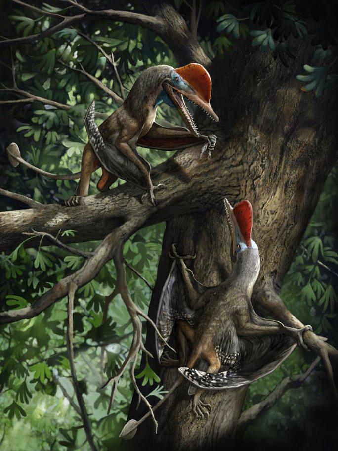 Quái thú bay kỷ Jura mang trên cơ thể thứ giống con người - Ảnh 1.