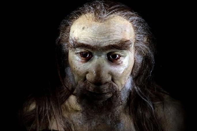 Phát hiện loài người mới có đuôi, từng giao phối với tổ tiên chúng ta - Ảnh 1.