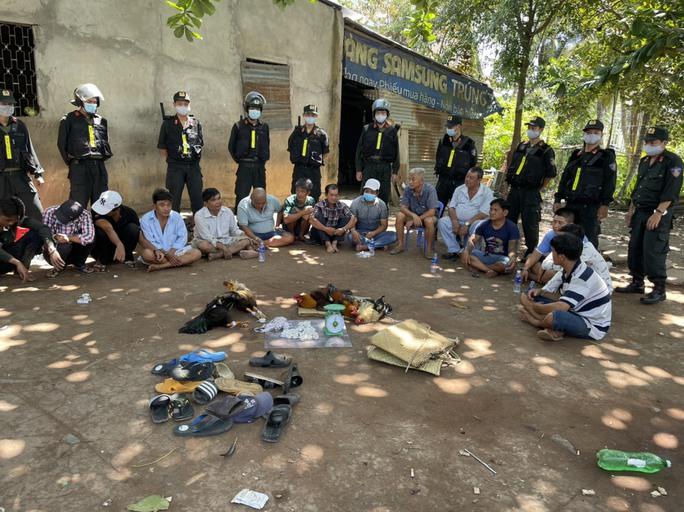 """CLIP: Cảnh sát xóa sổ trường gà Hoàng """"cận"""" ở Tiền Giang - Ảnh 2."""