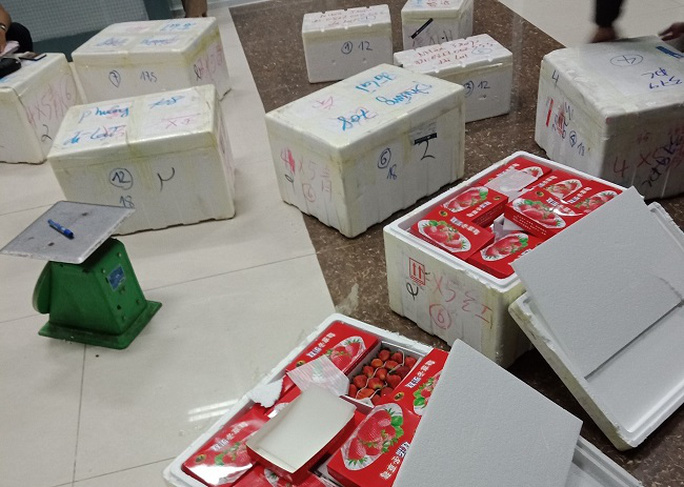 Phát hiện lô dâu tây Trung Quốc nhập lậu vào Đà Lạt bằng đường hàng không - Ảnh 3.