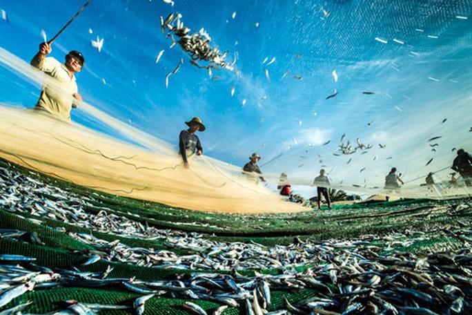 Việt Nam - Nhật Bản ký công hàm dự án khoa học biển - Ảnh 1.