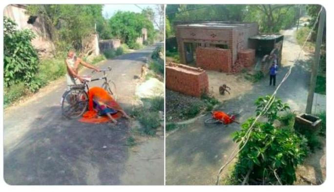 Covid-19 ở Ấn Độ: Chở thi thể vợ trên xe đạp tìm nơi hỏa táng - Ảnh 1.
