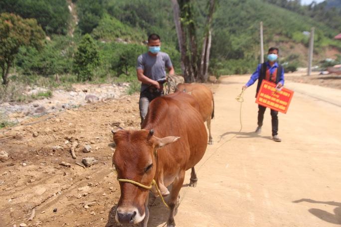 Người dân vùng sạt lở Trà Leng hân hoan về nhà mới - Ảnh 7.